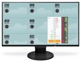 Eizo LCD EV2451 - FlexScan, černé
